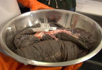 Paddlefish Eggs Sold as Caviar Funding Research