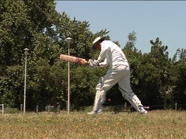 Cricket Gaining Ground In Oklahoma