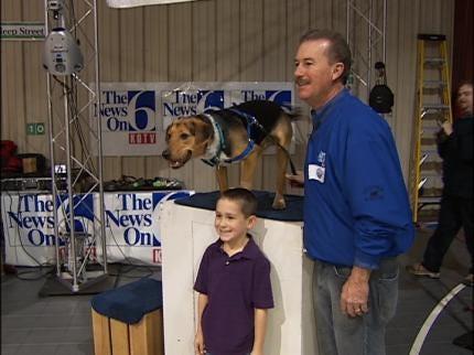 Radar Celebrates First Year As News On 6 Weather Dog