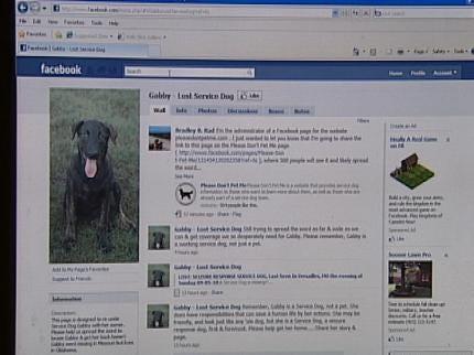 Reward Offered For Missing Oklahoma Service Dog