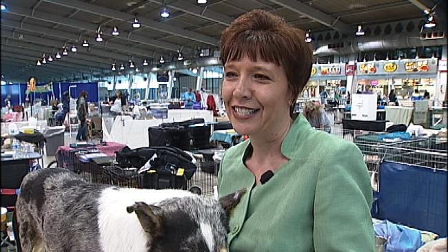 With Collie Show In Town, Tulsa Expo Center Ready For Severe Weather