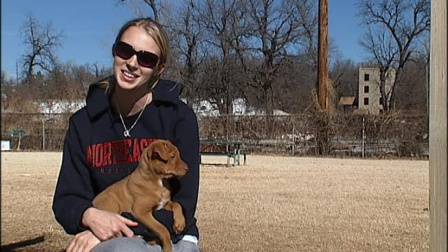 Tulsa Gets Spring Fever In January