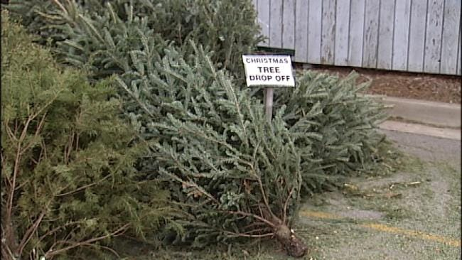 Tulsa Company Offering Vouchers In Exchange For Christmas Trees