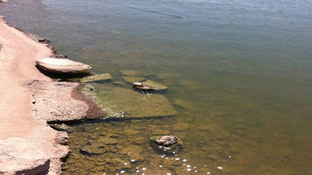 GRDA: Algae Bloom Like This One Has Never Happened In Oklahoma