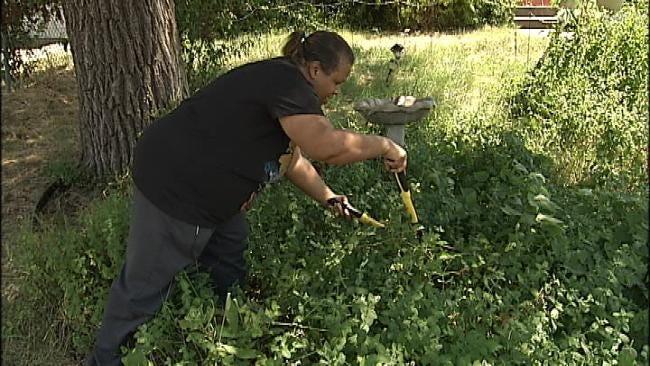 Tulsa Lawsuit Over Edible Garden Draws Most Readers In 2012