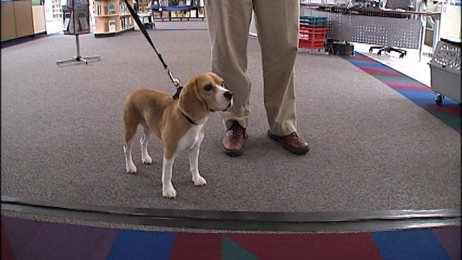 Bed Bug Sniffing Dog Checks Out Downtown Tulsa Library