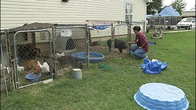 Animals Rescued From Hoarder In Central Oklahoma