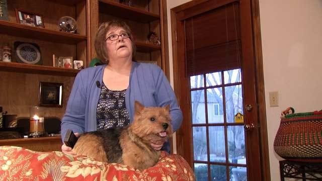 Westminster Best In Breed Champion Returns Home To Tulsa