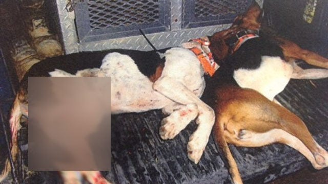 Poteau Man Charged With Killing Pair Of Hunting Dogs
