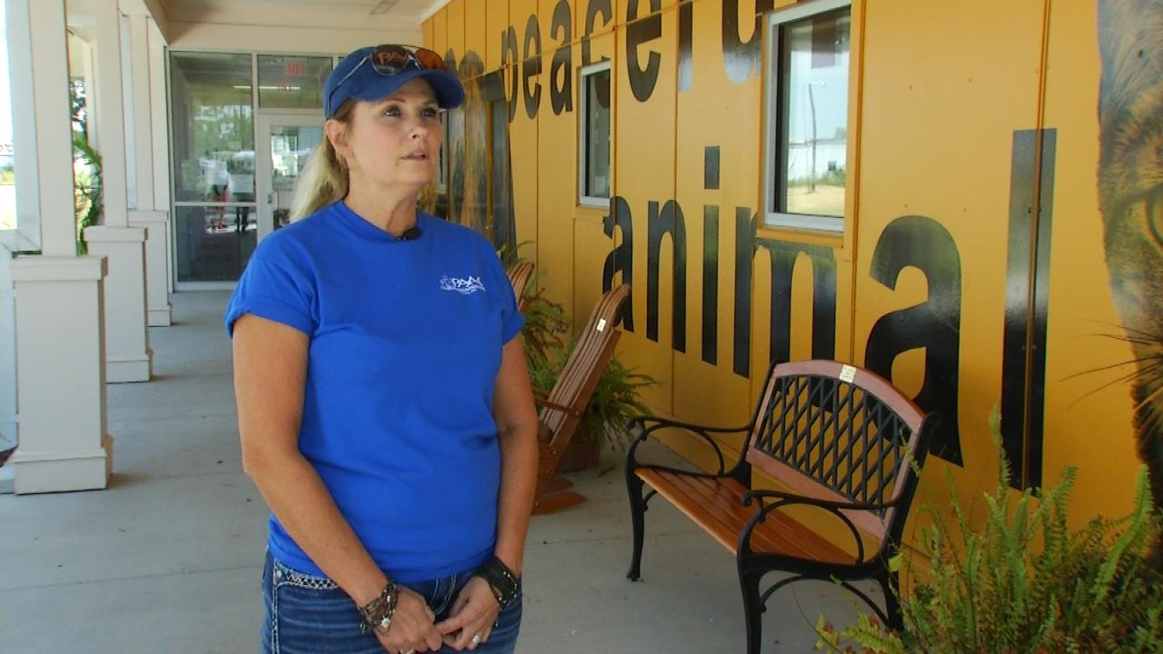 Rescue Shelter Taking Care Of Murdered Craig County Woman's Pets