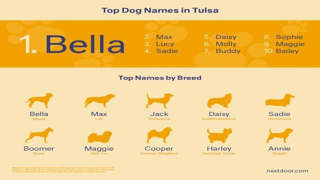 Rescue Foundation Looks At Top Tulsa Dog Names For 'National Dog Day'