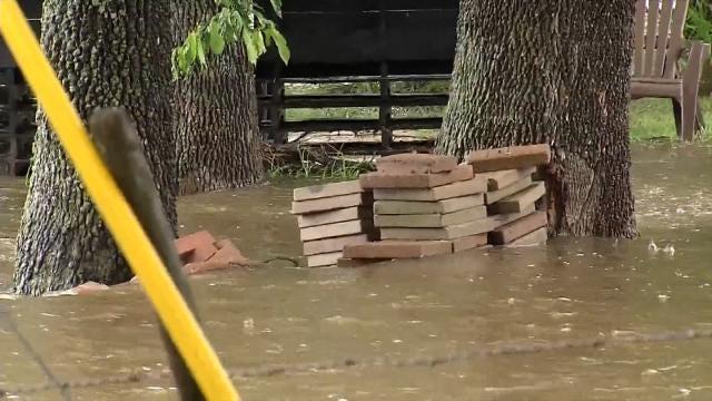 Rain Leaving Tulsa Yards With Pest, Fungus Problems