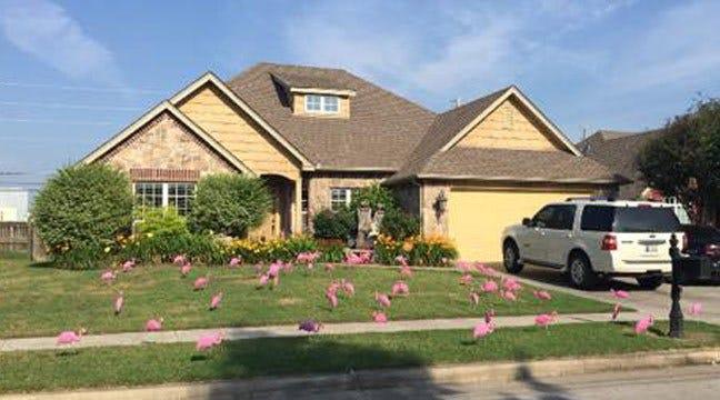 Owasso Family Gets 'Flocked' By Tulsa Vette Set