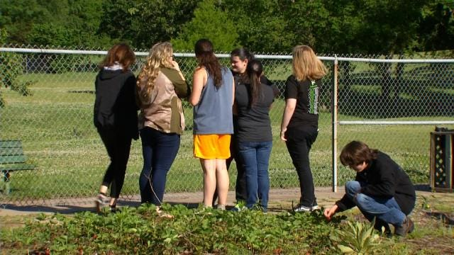 Berryhill Students Learn Biology In West Tulsa Community Garden