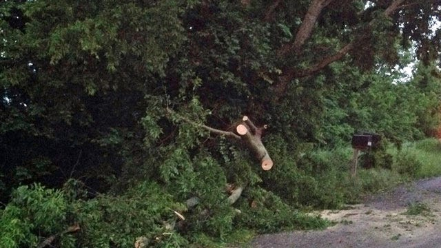 Wind Knocks Down Trees, Causes Power Outages Around Tulsa