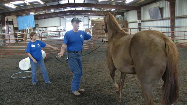 Drumright Couple Uses Horses To Help Military Veterans