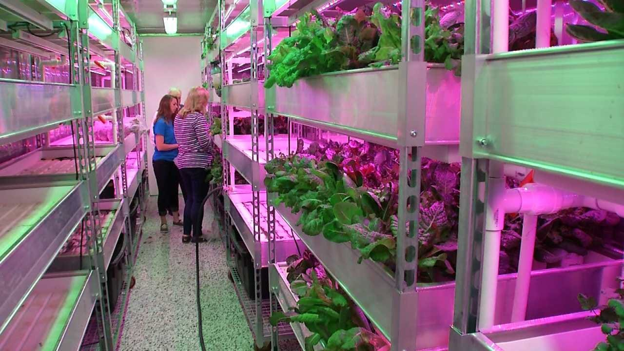 Food Bank Repurposes Shipping Containers To Grow Food