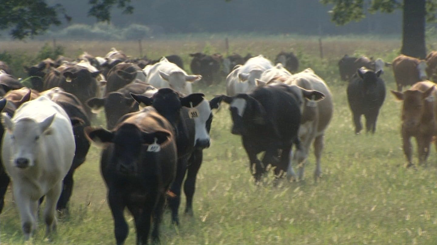 New Wagoner County Deputy To Investigate Agricultural Crimes