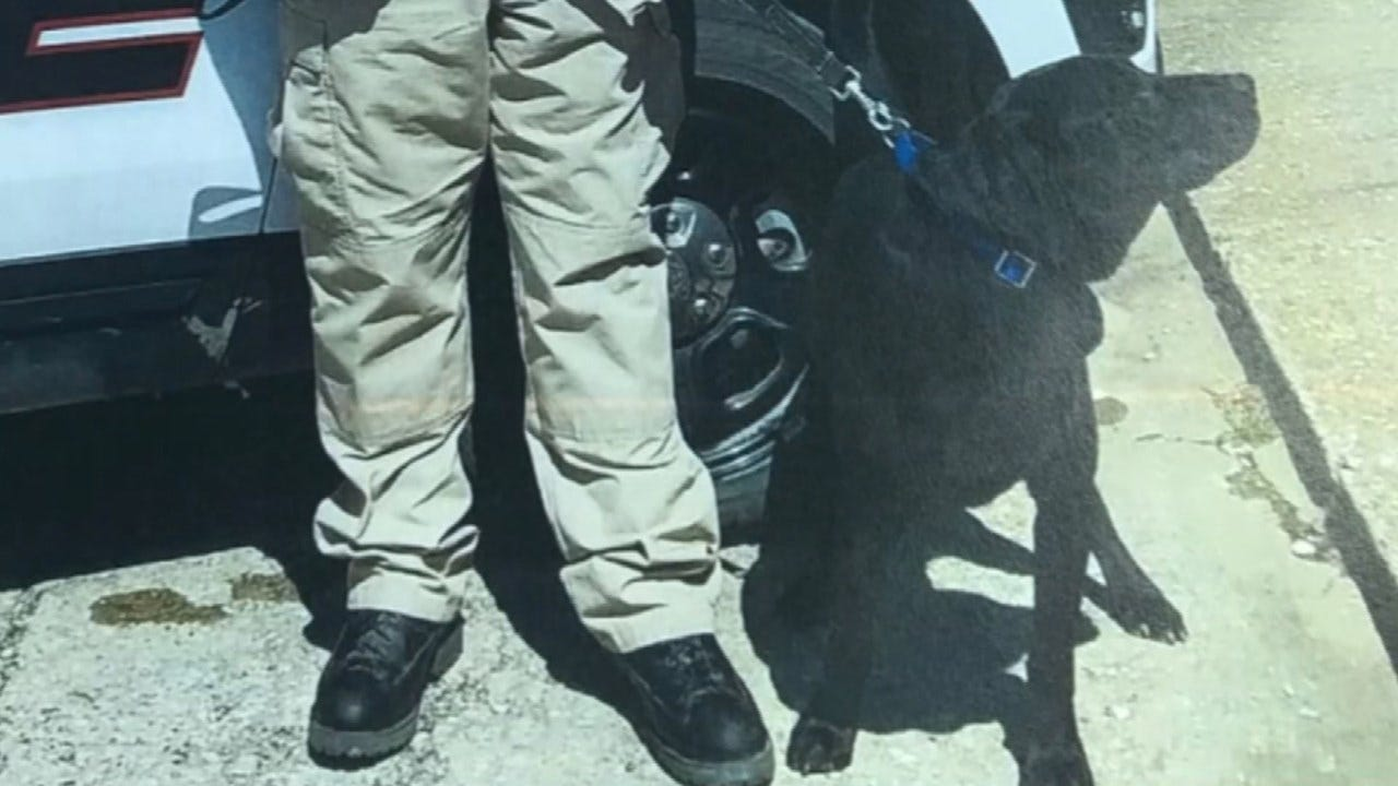 Nowata Police K9 Killed After Woman Lets It Out Of Police Car