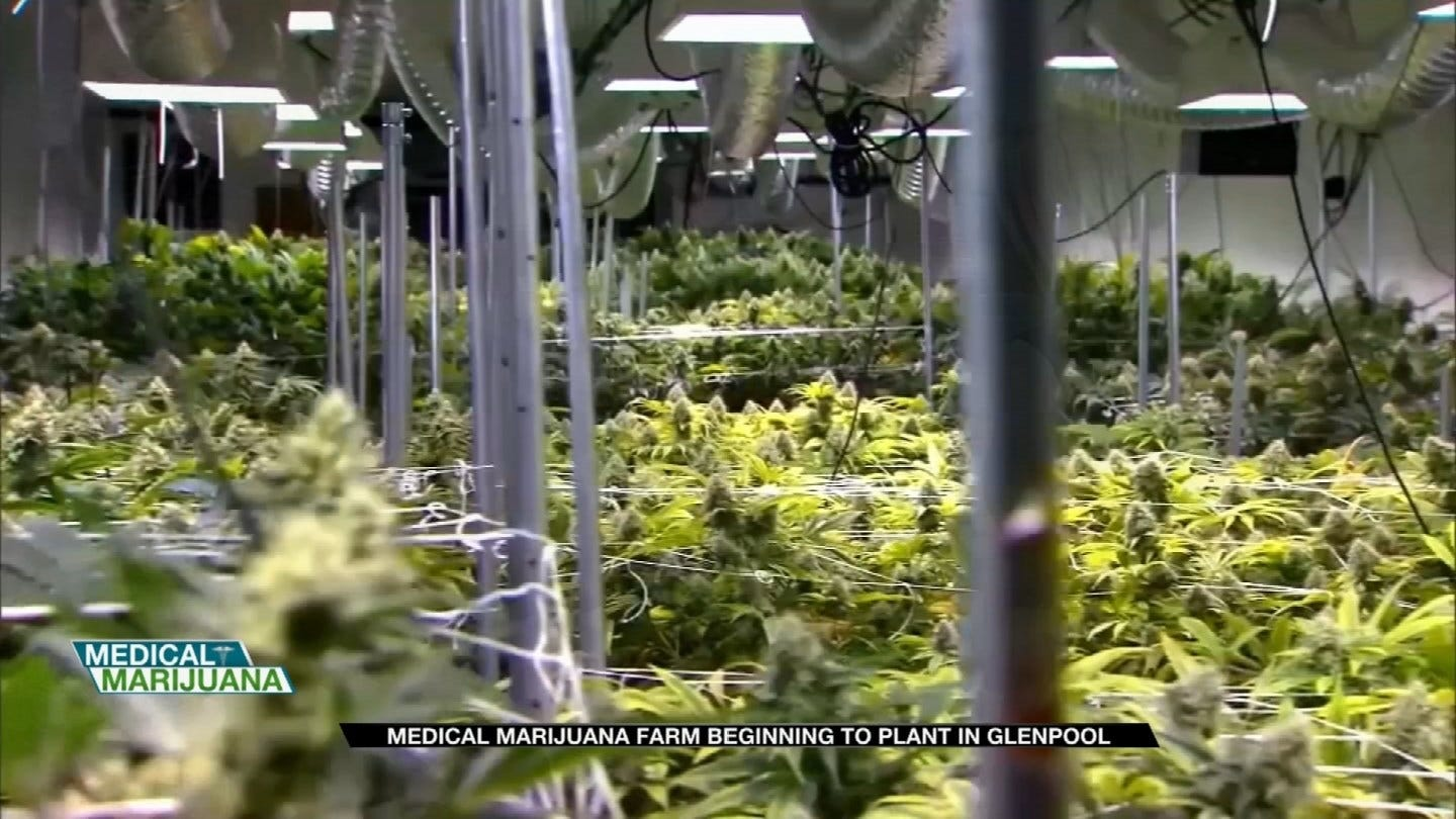 Glenpool Farm Receives Approval To Grow And Sell Medical Marijuana