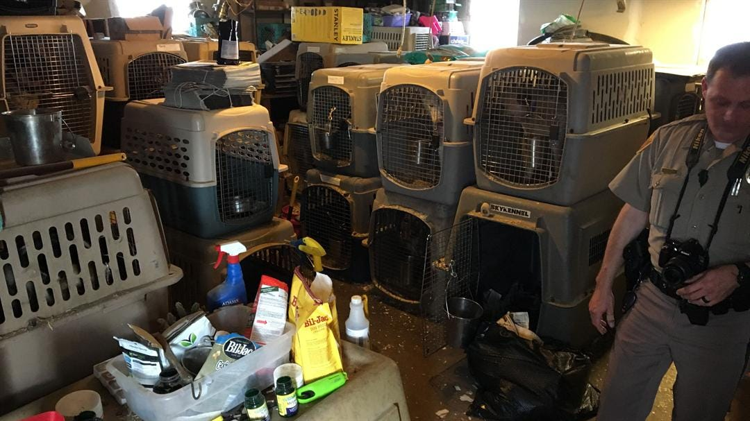 TCSO: Over 100 Animals Found Inside Woman's Home