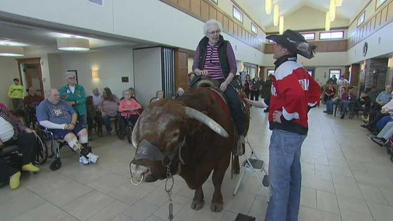 Therapy Bull Inspires Seniors To Grab Life By The Horns