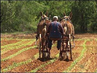 Farmer seeks fuel efficient plowing method