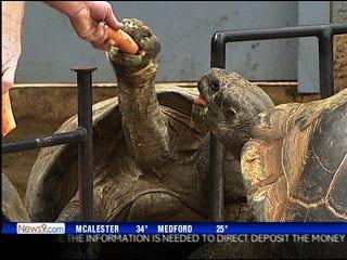 Zoo celebrates Valentine's Day
