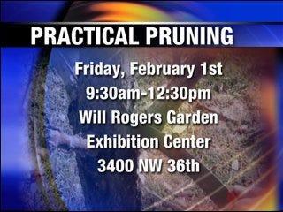 Free pruning workshop offered