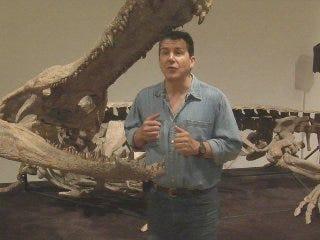 40-foot crocodile makes its way to Oklahoma