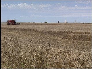 Bio-fuel industry influenced by state agriculture