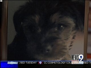 Woman Questions Breeder After Puppy Dies