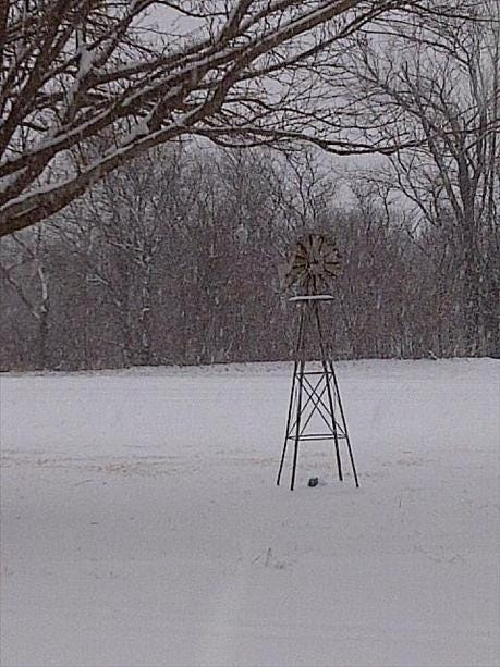 PHOTOS: Viewers Submit Pictures Of Snow In Their Area
