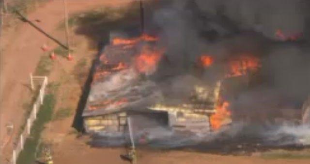 Horses Escape Burning Barn In Northeast OKC