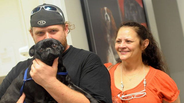 Humane Society Reunites 44 Dogs With Their Families Following Tornado