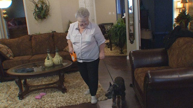 Reunited After The Tornado, Moore Woman, Dog Have A New Home