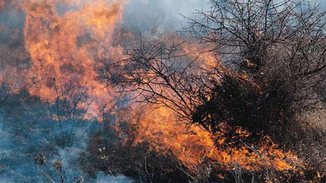 Oklahoma Calls On Outside Help To Fight Wildfires