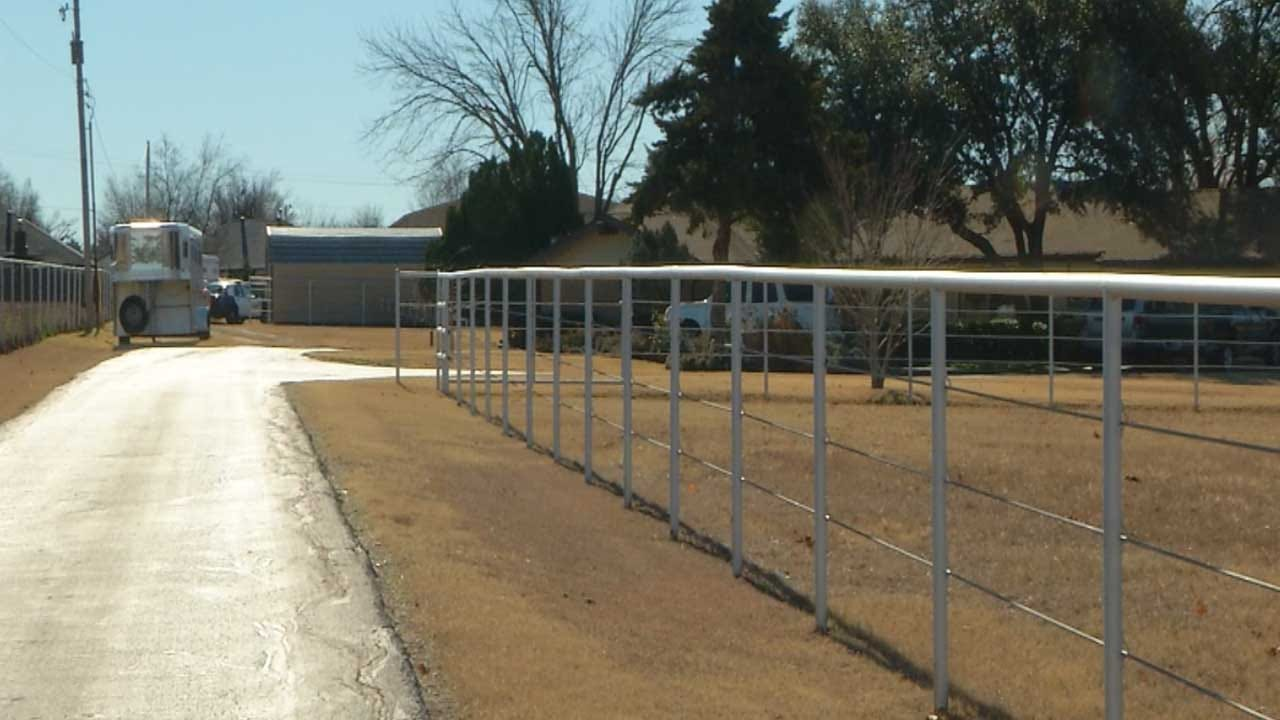 OKC Police Investigate Horse's Death After It Was Found Stabbed