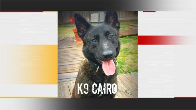 Oklahoma County Sheriff's K9 Cairo Sniffs Out Another Big Drug Bust