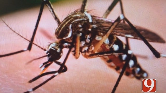 Oklahoma Doctor Explains What The Zika Virus Is