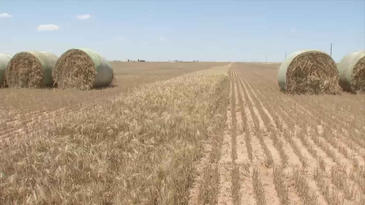 Right To Farm Question Stirs Fears About Oklahoma Waters