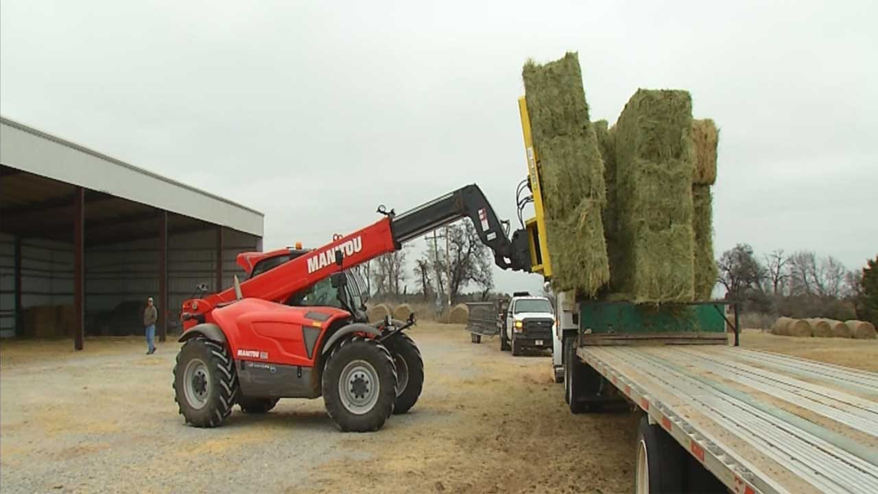 Hay Donations Pouring In, Delivered To Wildfire Victims In NW Oklahoma