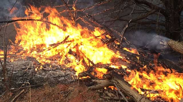 OKC Firefighters Work On New Plan To Tackle Wildfires