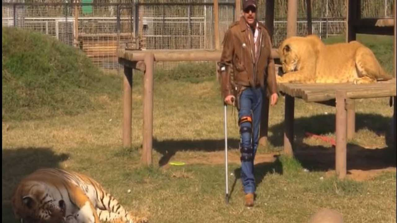New Charges Allege 'Joe Exotic' Shot Animals To Death