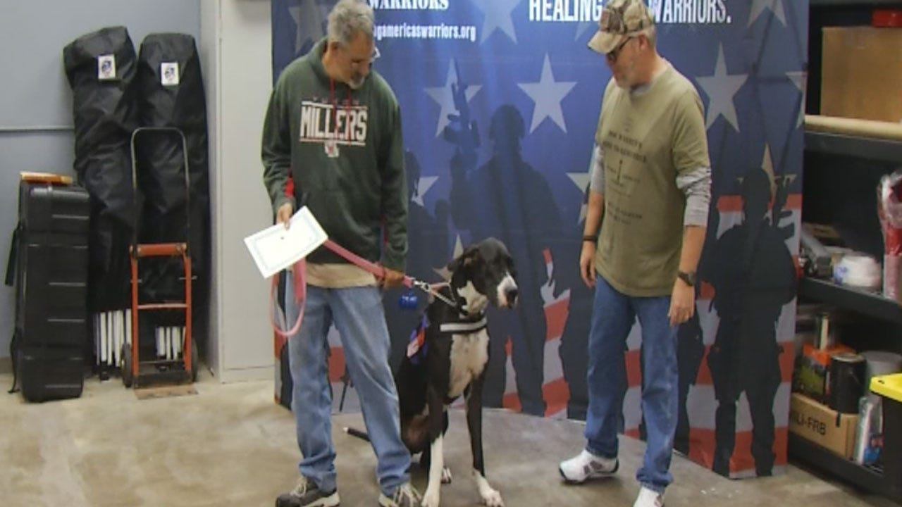 Military Members On A Mission Training Service Dogs